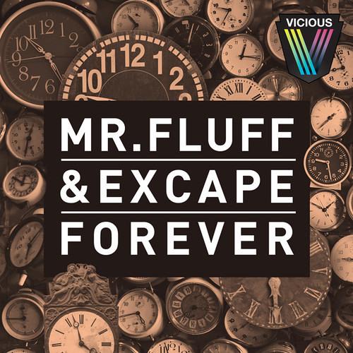 Mr. Fluff & Excape - Forever (Original Mix)