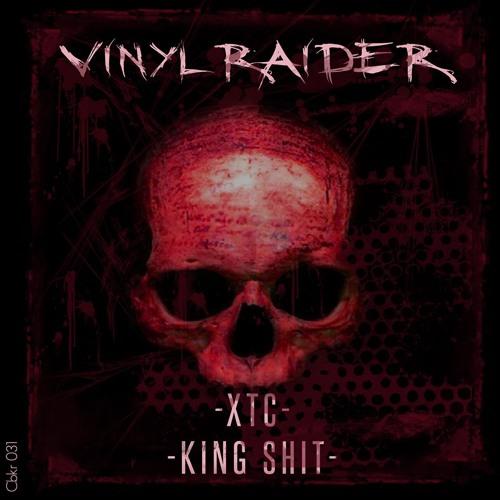 CBKR031 The Vinylraider - XTC