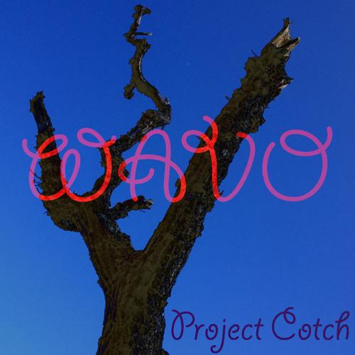 Project Cotch