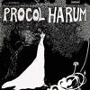 Procol Harum - A Whiter Shade of Pale (cover by RadioBucio)