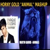 Martin Garrix vs Enrique Iglesias - Turn The Night Up (Horny Gold Animal Mashup)