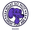 What So Not High You Are Branchez Remix