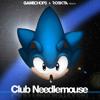 RobKTA - Club Needlemouse - Needlemau5 ft. bLiNd(Sonic 3 Ending)