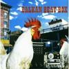 Balkan Beat Box - Bulgarian Chicks