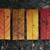 Autumn Essentials 13 Mix