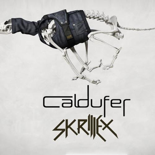 Skrillex - 'Puppy' (Caldufer Remix)