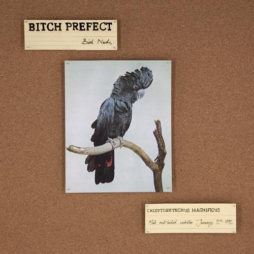 Bitch Prefect - University Fiend