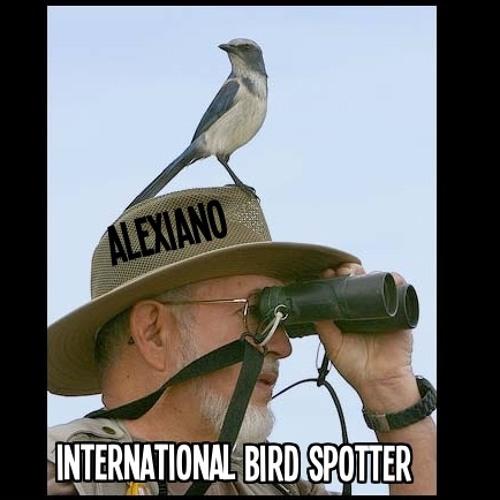 International Bird Spotter