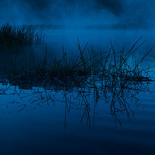 The Beast of Dunn's Swamp, Wollemi NP, Australia