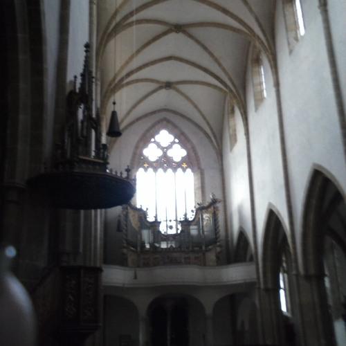 Teichmann & Söhne - live improvisation intro @ Dominikaner Kirche Regensburg