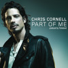 Chris Cornell feat. Timberland - Part of me (Mr. Neo L & Mr. DD Remix)