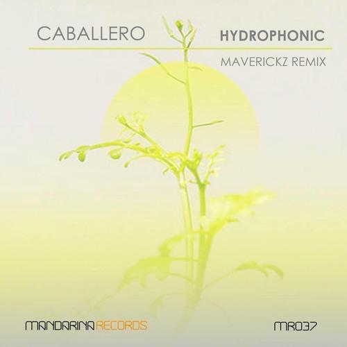 CABALLERO - Hydrophonic (Maverickz remix)