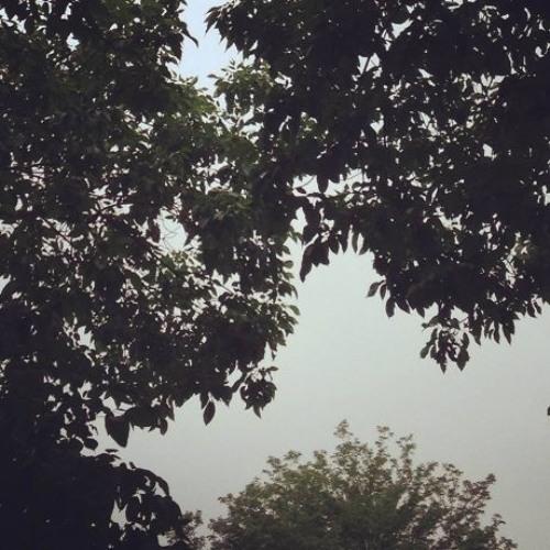 Guest Mix: M. Sage - Sunday is Raining