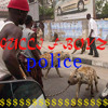 POLICE (Prod. YOUNG CHOP)
