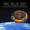 Mr Blue Sky (Instrumental Remix)