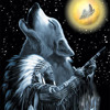 Cherokee Wolf (Native American Music)