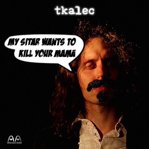 My Sitar Wants To Kill Your Mama (Frank Zappa cover // free dl)
