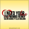 I Need Your Love - Calvin Harris Ft Ellie Goulding (Granha & Eric Mambo Remix)