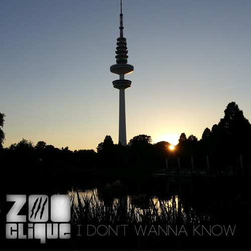 Mario Winans - I Don't Wanna Know (Zoo#Clique Edit)
