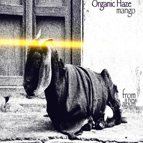 Organic Haze - Mango (from new album)
