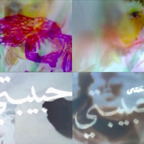 Fading Faces - VADAV & Shams Asma