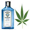 Download Smoker & Drinker Mp3