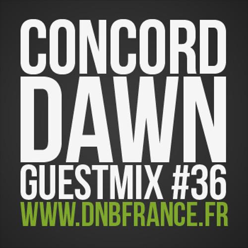 Concord Dawn - DNBFRANCE GUESTMIX#36