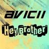 Avicii - Hey Brother (DJ Flim Flam Extended Remix)