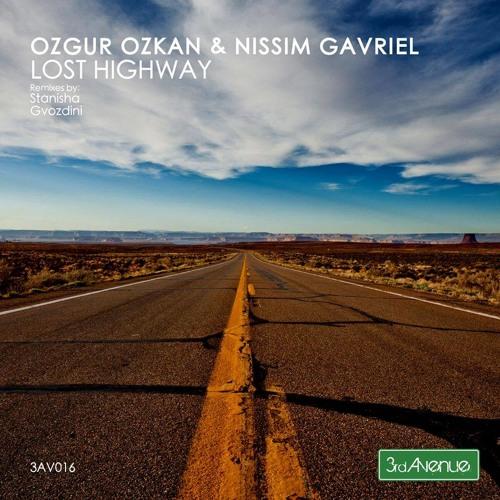 Ozgur Ozkan and Nissim Gavriel - Lost Highway (Gvozdini Remix) [3rd Avenue] preview