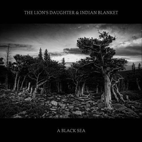 The Lion's Daughter & Indian Blanket: Wolves