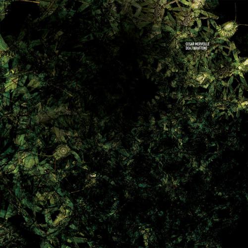 Cesar Merveille - Kraftone (Cadenza91) [Teaser]