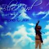 Naruto Shippunden -Blue Bird (COVER)
