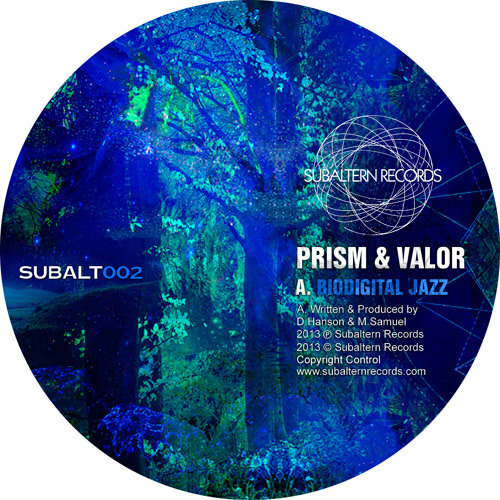 SUBALT002 - Prism & Valor - Biodigital Jazz (M.Ezm.YR Remix) - Digital Bonus