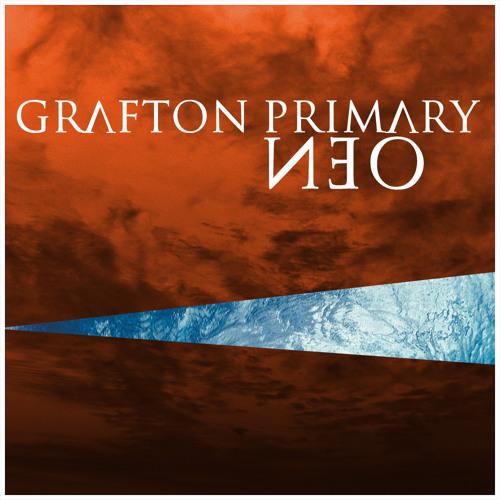 Grafton Primary - Neo