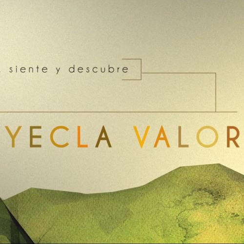 Yecla Valora Educational