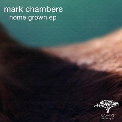 mark chambers - well well [eric volta's detroit garage mix]  - safari numerique