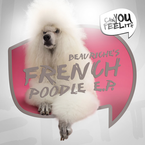 Beauriche - French Poodle