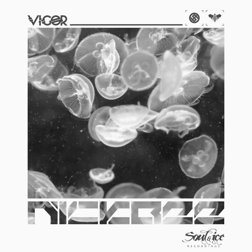 NickBee - Vigor(Soul & Ice recordings) - out on 28 of october