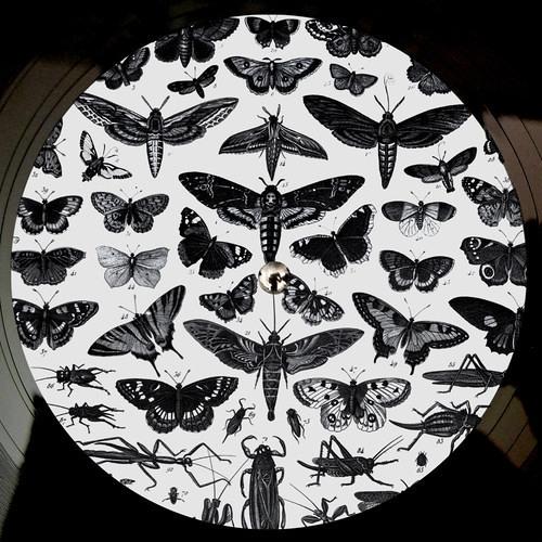 Bodhi - Imperfection (Vestalus Remix)