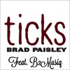 Brad Paisley Ticks (Cover)