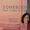 Goyte feat. Kimbra - Somebody That I Used To Know (Michelle C Remix) **download enabled**