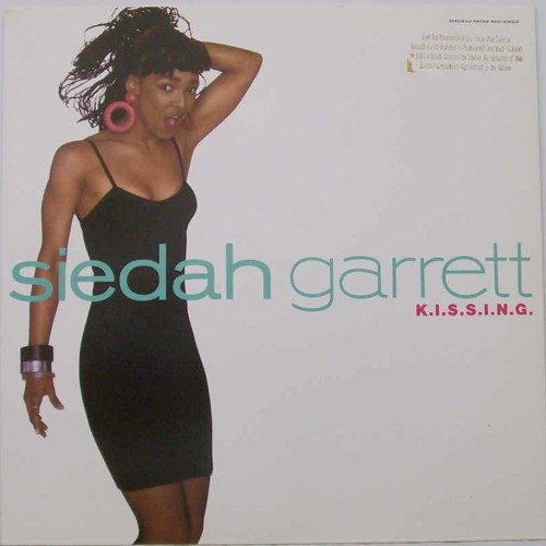 K.I.S.S.I.N.G. - Siedah Garrett (Junior's Dirty Electro Mix, 2007)