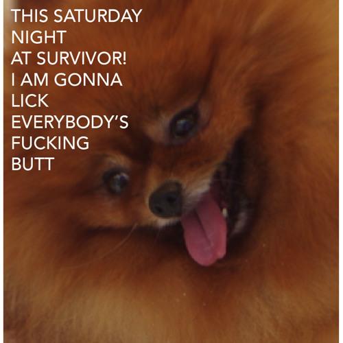 Live @ Survivor! October 12, 2013