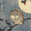 """""""Lonely Owl"""" by Gold Panda (Timber Son Rmx)"""