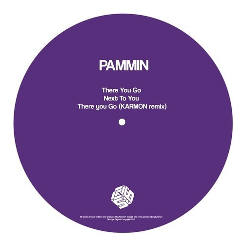 Pammin - There You Go ( Karmon Remix )