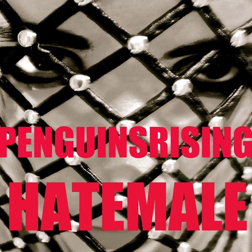 PenguinsRising-Hate Male-Bandish Projekt Remix (Free Download)