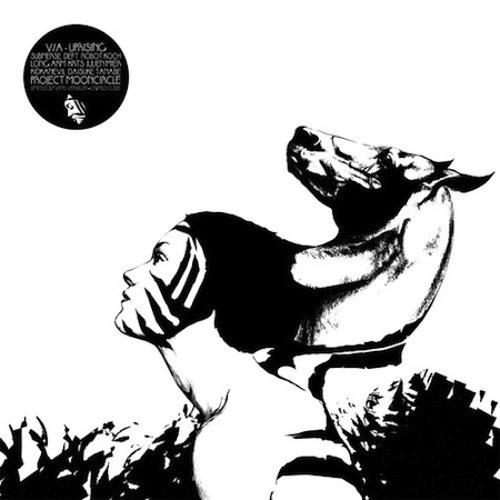 KRTS - Bonehead