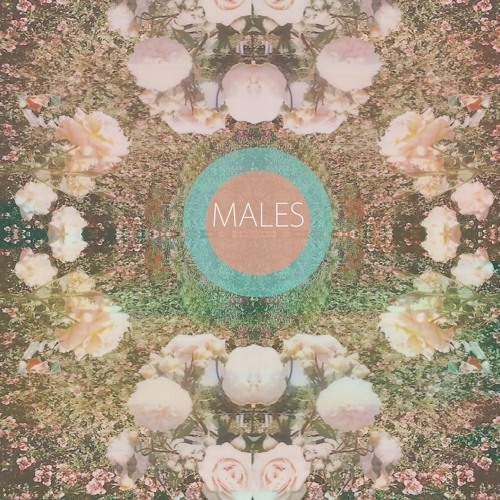 Males - Lucky Too