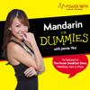 Mandarin for Dummies - Cat Mama