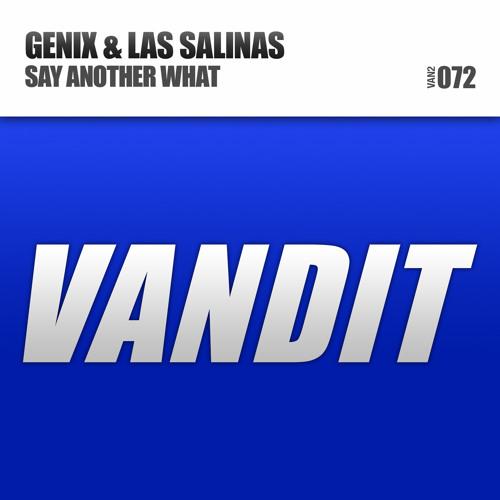 Genix & Las Salinas - 'Say Another What' (High 5 Remix)